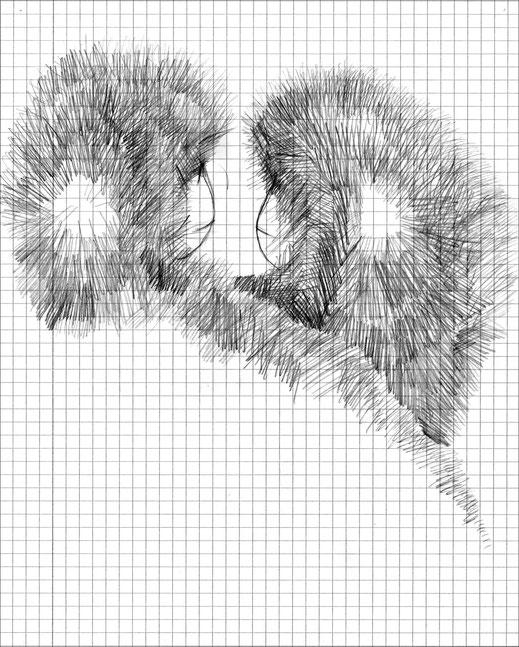 *Schneeaffen mit kreisrundem Haarausfall, 2003, Bleistift auf kariertem Papier, 19,5 x 24,7 cm