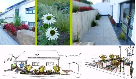 Beet-Impressionen I Konzeptskizzen Beetzonen Garten