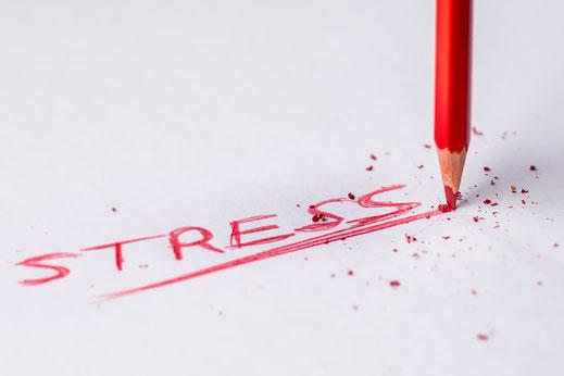 Bild Stress