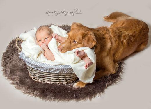 Newborn Shooting, Neugeborenen Fotografie, babys, Studioaufnahmen, Familie,