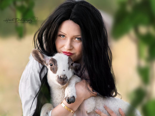 Fotoshooting mit Schafherde, Lämmchen, Fotoshooting mit Lamm, Herde, Co.Model