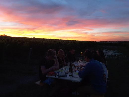 visite-degustation-insolite-nocturne-dans-les-vignes-vignoble-Vouvray-Touraine-Amboise-Tours