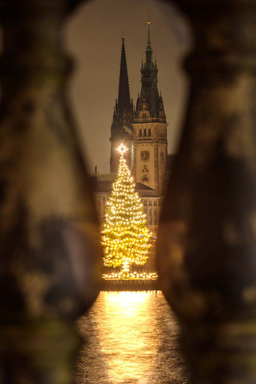 Hamburg Weihnachtsbaum Binnenalster Rathaus Kirche Wasser