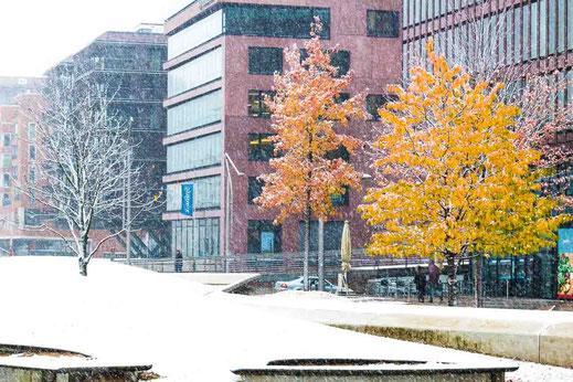 Schnee Schneefall Hafencity restliches Laub orange Blätter Hamburg