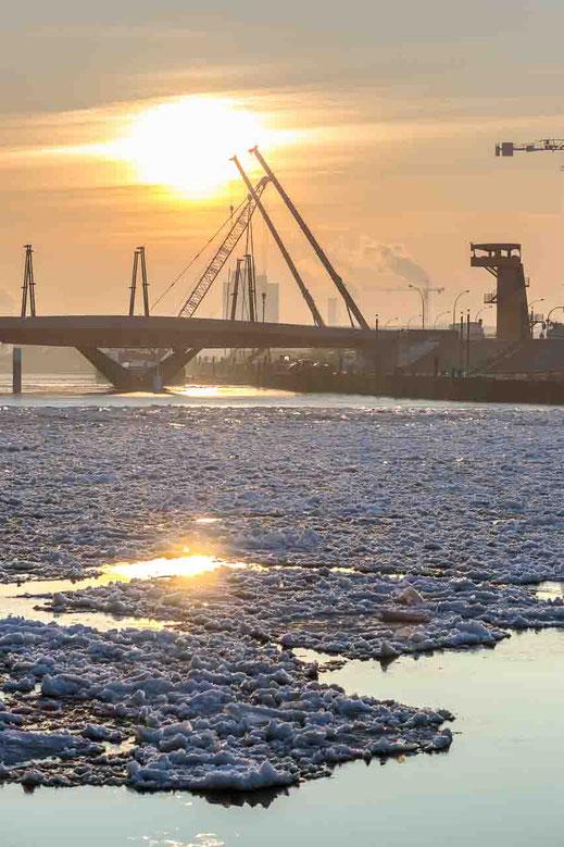 Bruecke Streben Hafencity Hamburg Morgenlicht