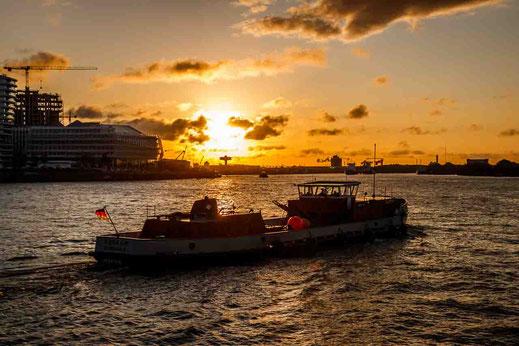 Sonnenaufgang Hafencity Schiff Weg Arbeit Wasser Hamburg Hafen