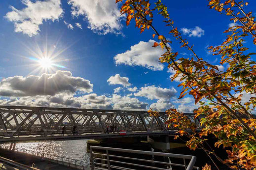 Bruecke Hafencity Oberhafen Herbst Laub Elbarkaden