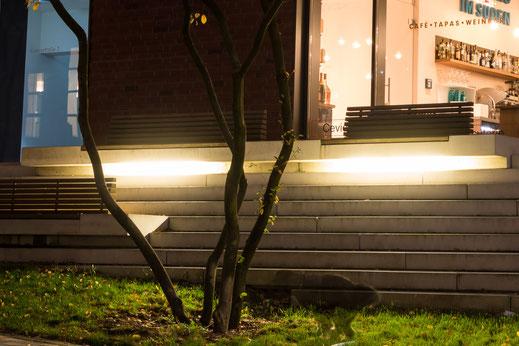 Baum und Hund mit Beleuchtung