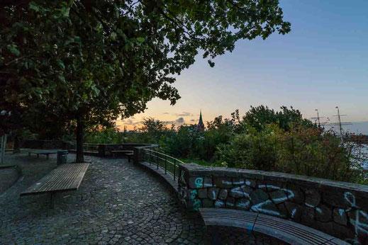 Mauer Jugenherberge Hamburg Baum Sonnenaufgang