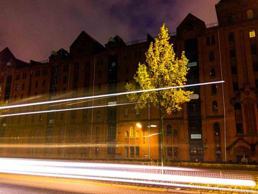 Baum Speicherstadt Lichtspuren HTC U11 Langzeitbelichtung