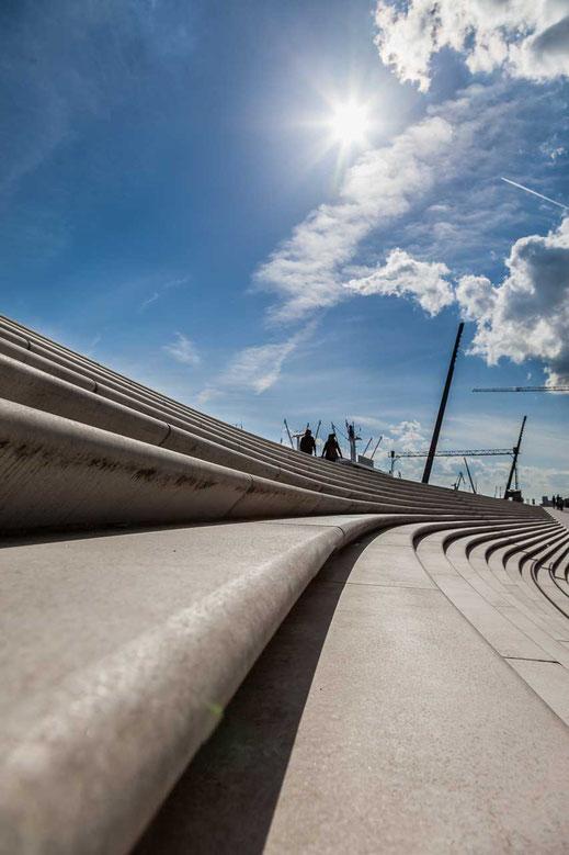 Linien Kurven Flutschutzmauer Hamburg Baumwall Gegenlicht