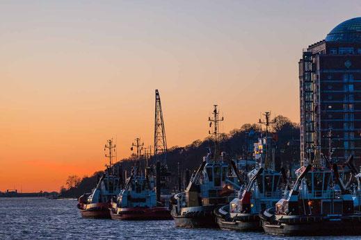 Museumshafen Hafen Schlepper Hafen Sonnenuntergang Elbe