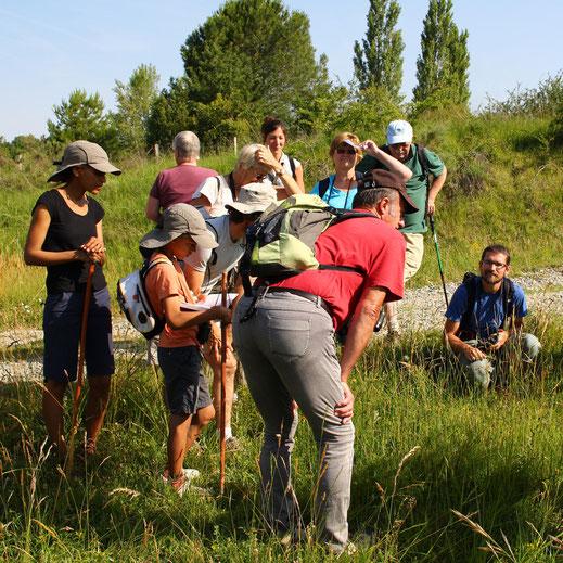 Rando naturaliste - Pyrénées Audoises