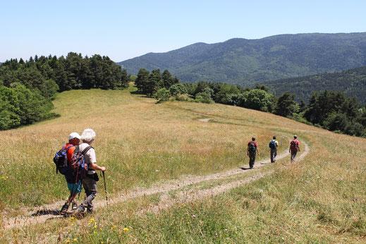 Serre de Montfort - Rando Pyrénées Audoises
