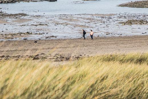 Ein Hund und zwei Menschen am Strand von Gouville-sur-Mer in der Normandie