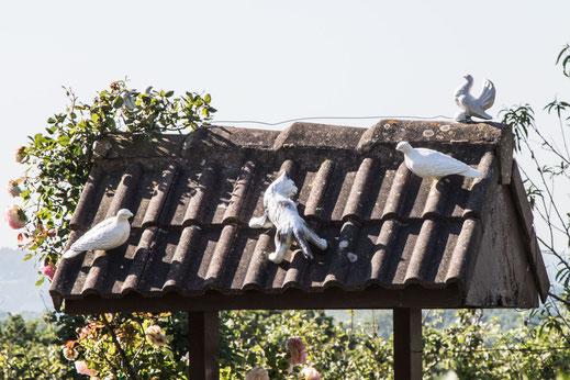 Tonfiguren sitzen auf einem Brunnendach