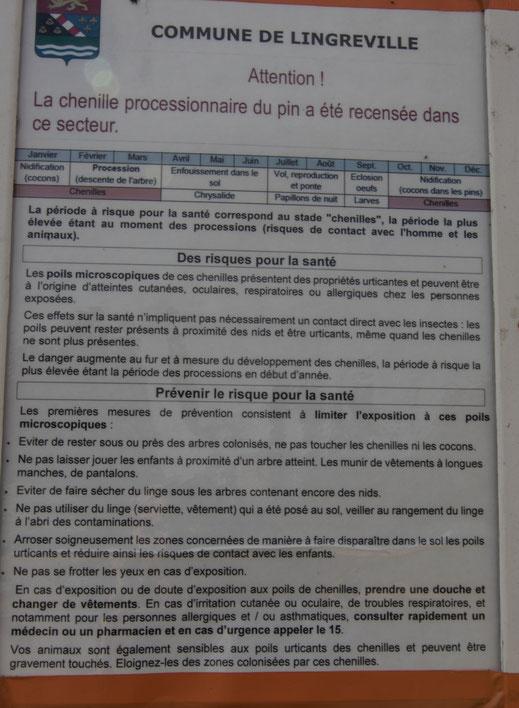 Warnhinweis vor dem Oinienprozessionsspinner in Lingreville in der Basse Normandie