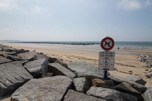 Hundeverbotsschild am Strand von Coudeville-Plage in der Normandie