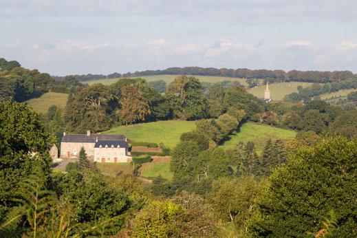 Wallhecken und Weiden in der Normandie - eine typische Bocage-Landschaft