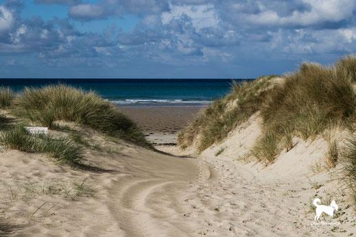 Dünen und Strand von Surville an der Westküste des Cotentin
