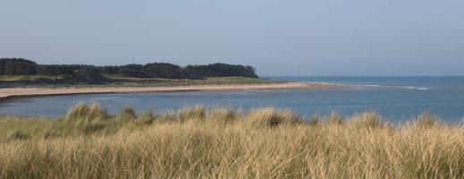 Dünen und Meer in Créances in der Normandie