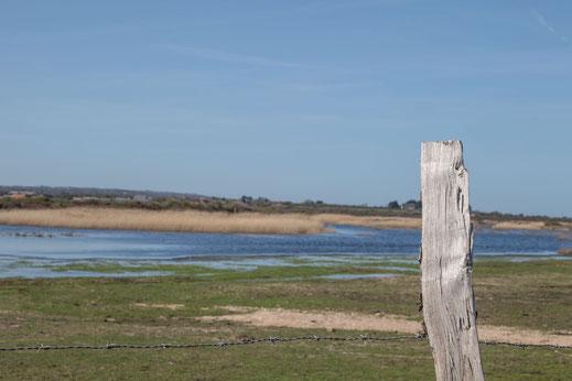 Val de Saire, Mares, Normandie, Cotentin