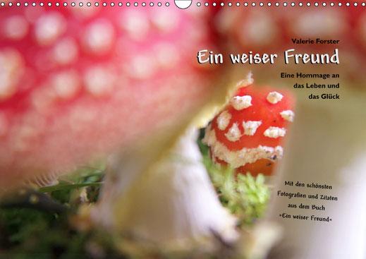 Valerie Forster, Kalender, Calvendo, Cover, Ein weiser Freund