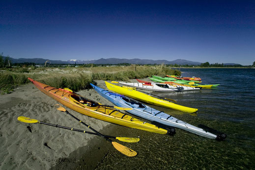 Colourful kayaks resting on the Comox Bay.