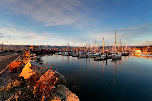 Boats and the Comox Marina are bathed golden early morning light.