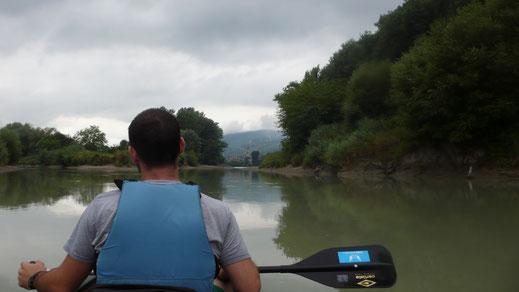 stromaufwärts an einem ruhigen Abschnitt in der Rührsdorfer Au...