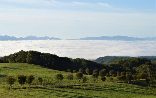 雲海がなくてもきっと素晴らしい景色。普段は気付かないもんですな。