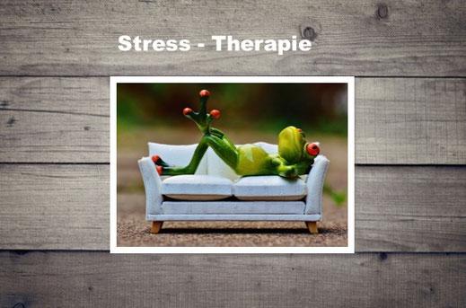 Die Stress Therapie ist eine wissenschaftlich belegte Methode, in der Stressoren gemindert und verändert werden können. Durch Stress wird mehr Adrenalin ausgeschüttet und das Glückshormon Serotonin abgebaut. Dieses Hormon ist jedoch elementar wichtig, den