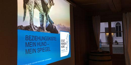 """Titelbild Themenabende (Themenabend """"Beziehungskiste: Mein Hund mein Spiegel"""" mit Karin Jansen, D)"""