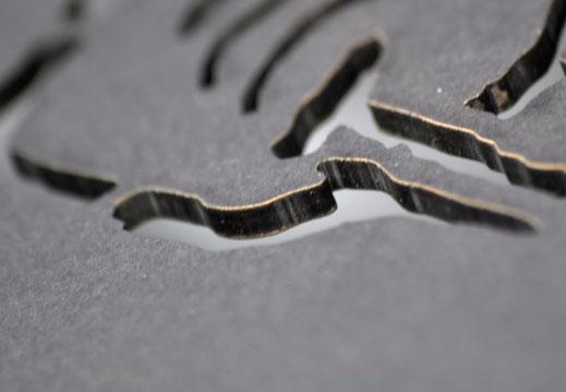 Laserstanzung Buchdeckel
