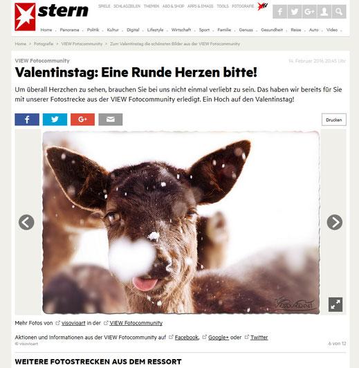 visovio herzflocke | redaktionelle auswahl für die valentinstags-fotostrecke auf stern.de 2016