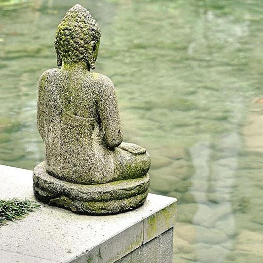 japanische Lehre der Akupunktur - nach Manaka und Kawai