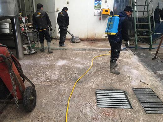 Descontaminación completa del soporte