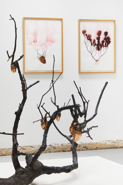 """© Jeanchristophe Lett, Javier Pérez, """" Pulsiones - Pulsaciones """" galerie Papillon, Paris"""