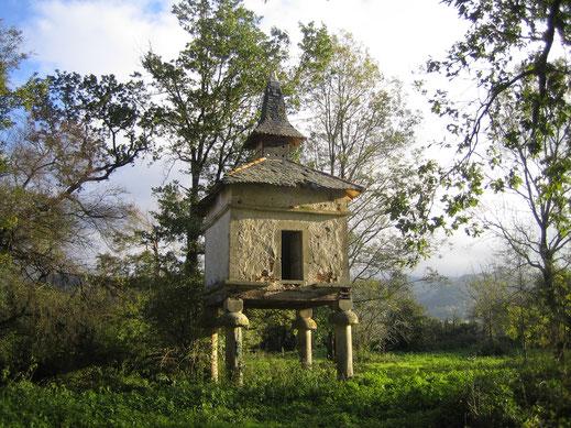 Office de tourisme Terres d'Autan Montagne Noire, Dourgne Puylaurens, Occitanie, Tarn, Pastel, Montana, bosque, Pastel
