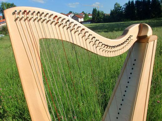 Harfe mit Klangdecke aus massiver Fichte mit Elsbeere furniert