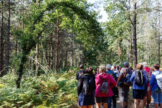 Visites groupes nature Touraine Val de Loire excursions randonnées