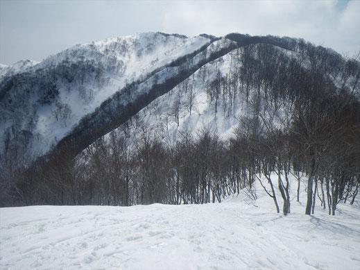 前山より銀杏峰を望む