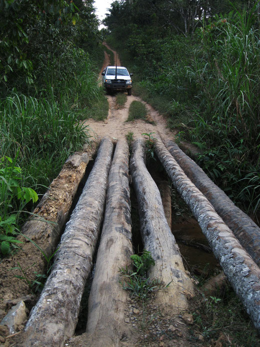 Provisorische Brücke aus Baumstämmen bietet die einzige Möglichkeit zur (Auto-)Reise nach Konjorlloe in 2011