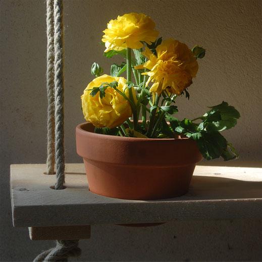 étagère à fleurs