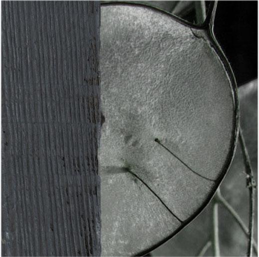 bois peint en gris foncé
