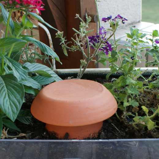 ollas poterie d'irrigation