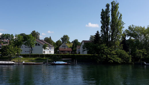 "View from the Rhine to the ""Haus am Sonnenberg"" (in the middle)"