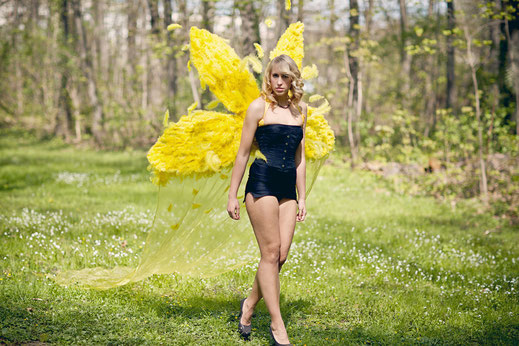 2011, Yellow-Fairy-Wing; photo: K. Wagner