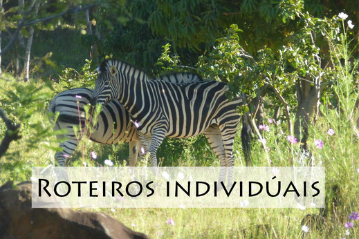 Individual Trips, Travel and Tours Angola