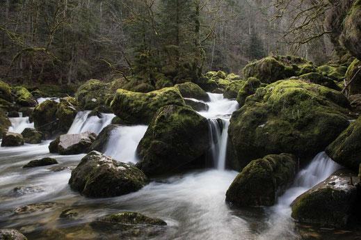 Karstquelle Môtiers  Wasserfall Meyer's Naturerlebnisse